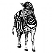 Zebra- Wallsticker